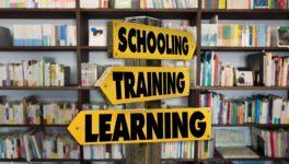 Wie uns Schule, Erziehung und Gesellschaft die Freude an der Arbeit nehmen