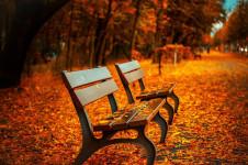15 Gründe den Herbst zu lieben
