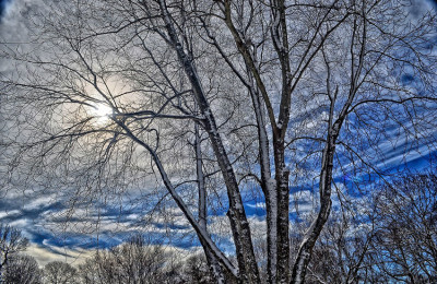 15 Gründe den Winter zu lieben