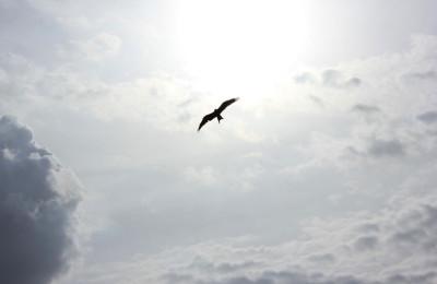 3 unangenehme Wahrheiten über deine persönliche Freiheit