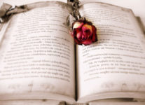 Die besten Bücher, um glücklich zu werden