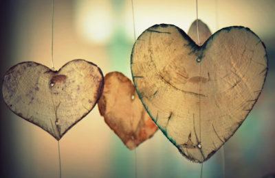 Liebe deine Arbeit: Wie ich meine Berufung fand und was ich auf dem Weg gelernt habe